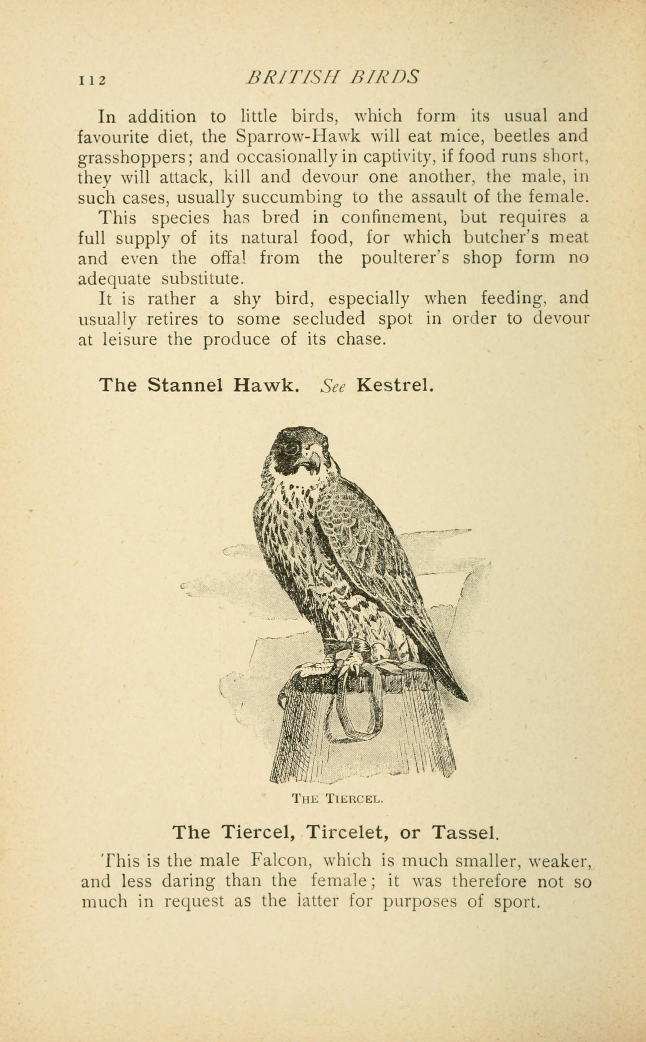 File:British birds for cages and aviaries (Page 112) BHL9355891.jpg ...