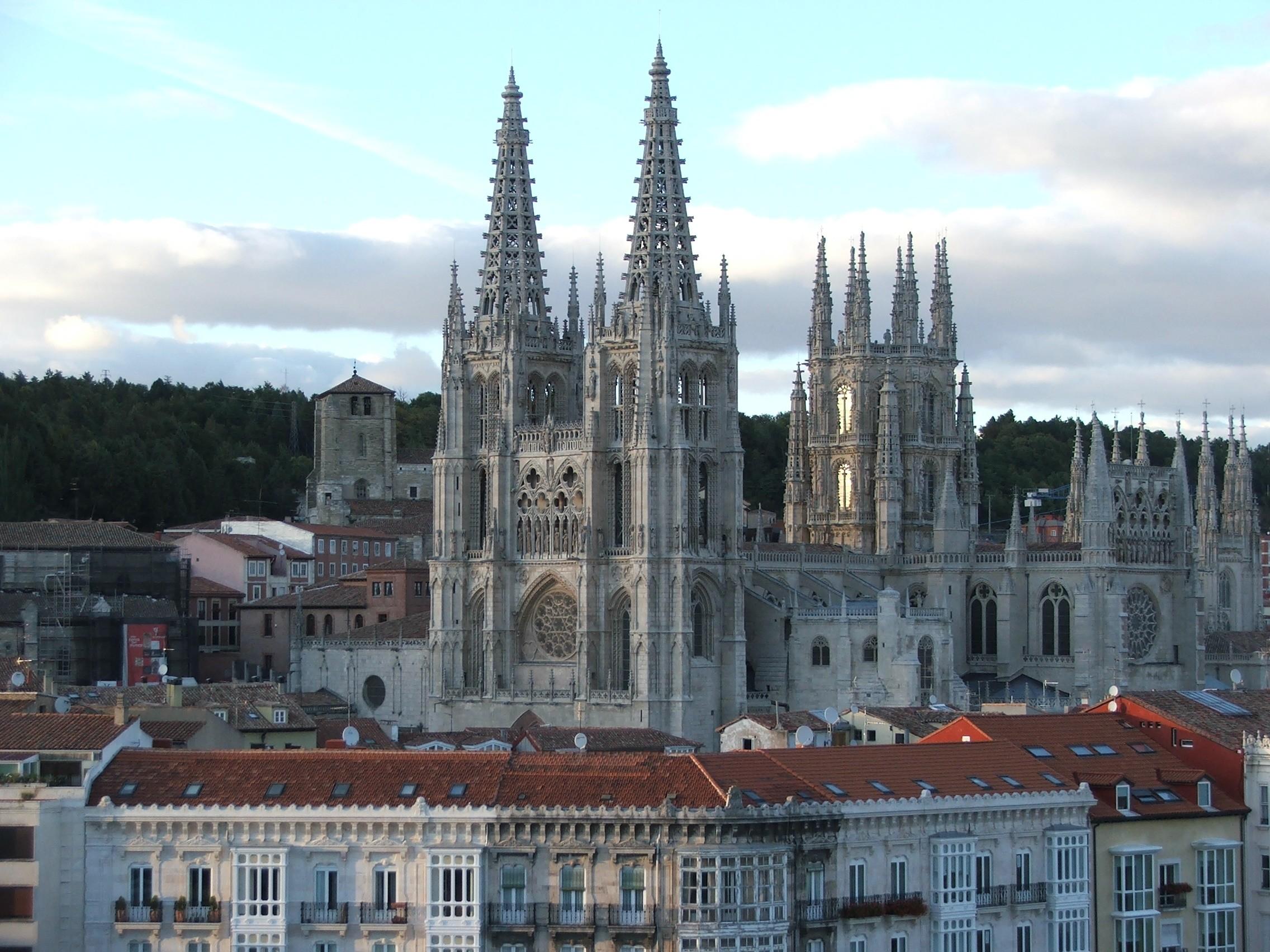 Burgos Net Worth