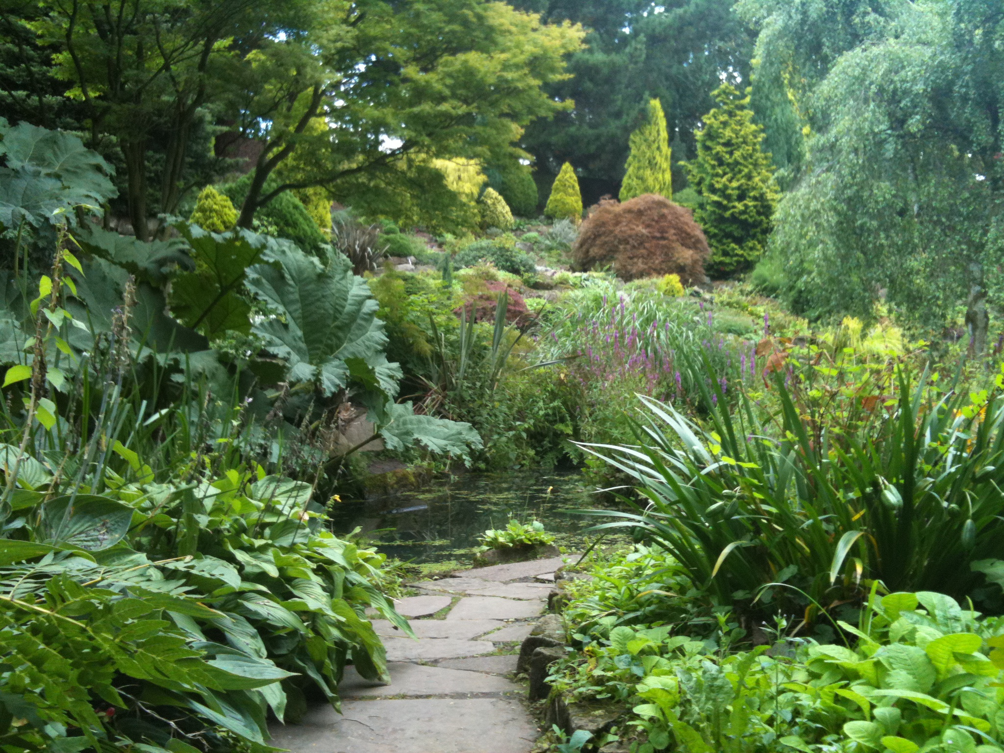 Path through the rock garden surrounded by herbaceous perennials