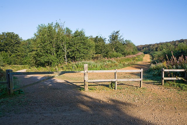 Footpath junction on Brighstone Down - geograph.org.uk - 539985