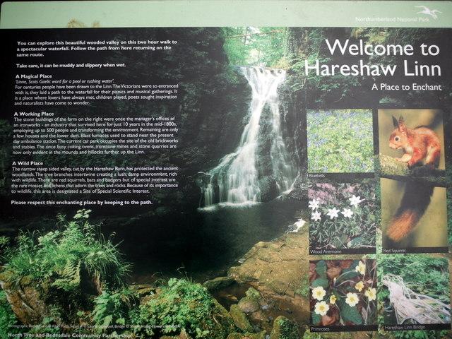 Footpath to Hareshaw Linn - geograph.org.uk - 1143163