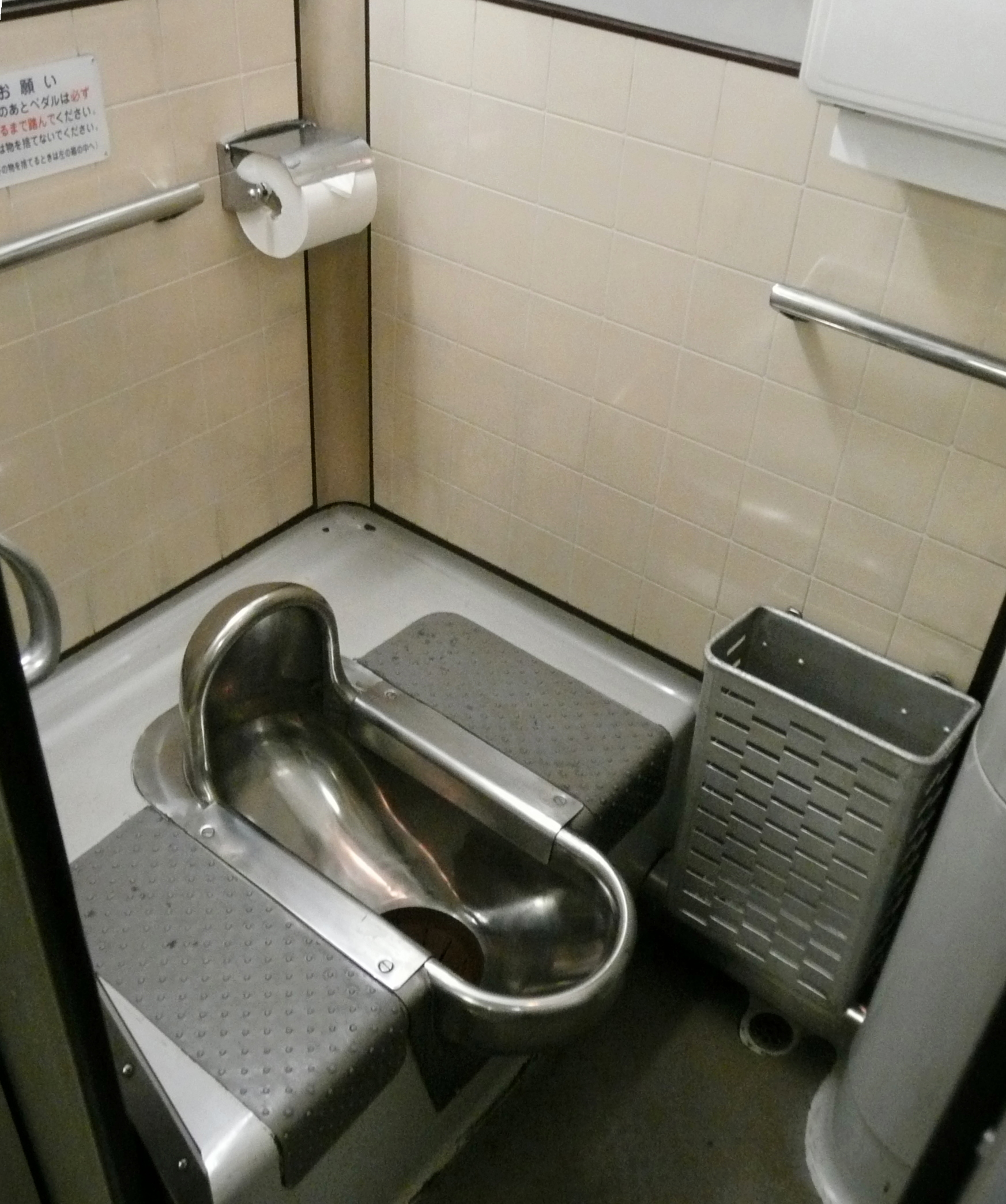 How to toilet train an older dog