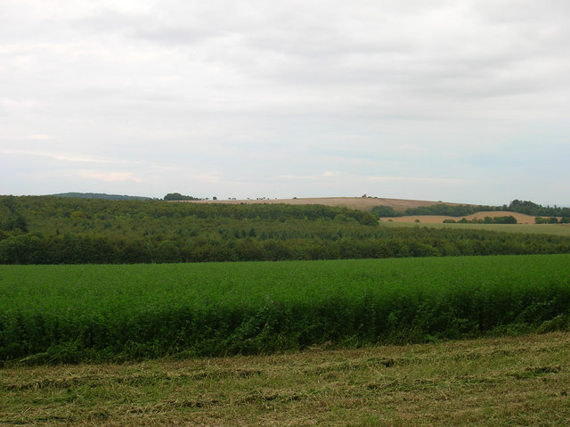 Hat Hill - geograph.org.uk - 225656