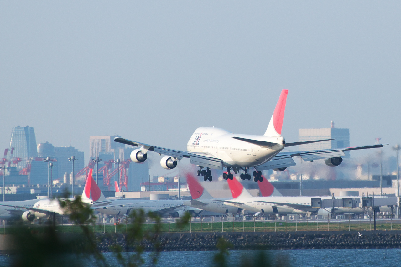 rear view of aircraft landing, with airport terminal and parked aircraft in the background