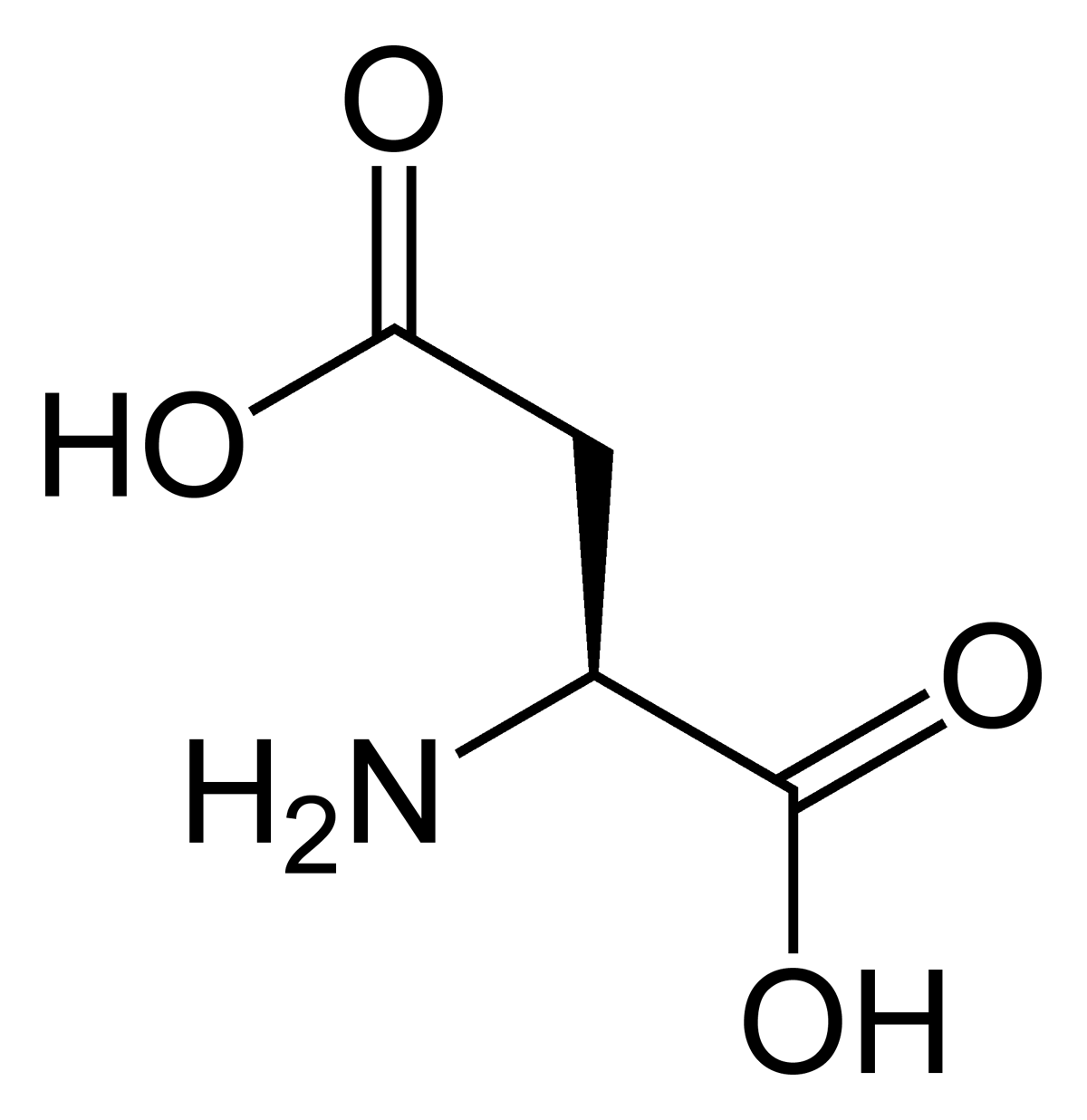 Aspartic acid lewis structure