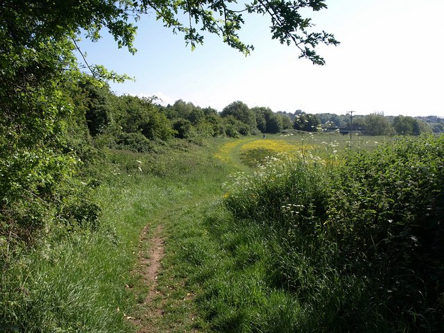 Meadows near Chippenham - geograph.org.uk - 1337207
