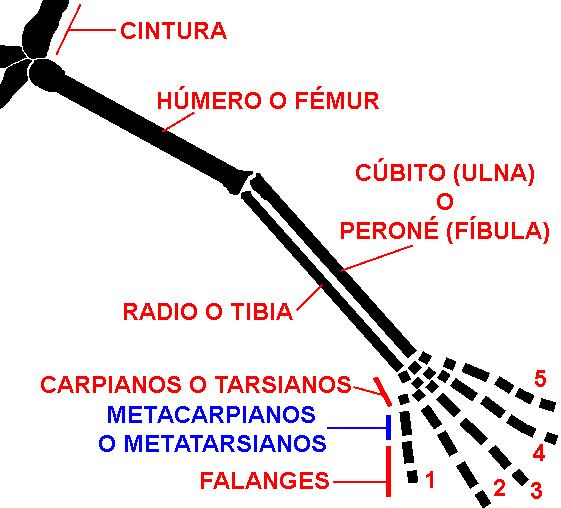 Depiction of Quiridio