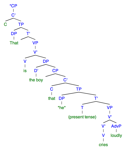 Resumptive pronoun wikiwand sentence 3b this syntactic tree of the sentence that is the boy that ccuart