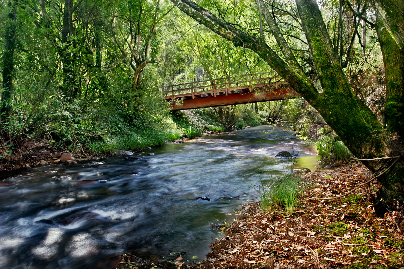 http://upload.wikimedia.org/wikipedia/commons/1/19/River_in_harrietville_trout_farm.jpg