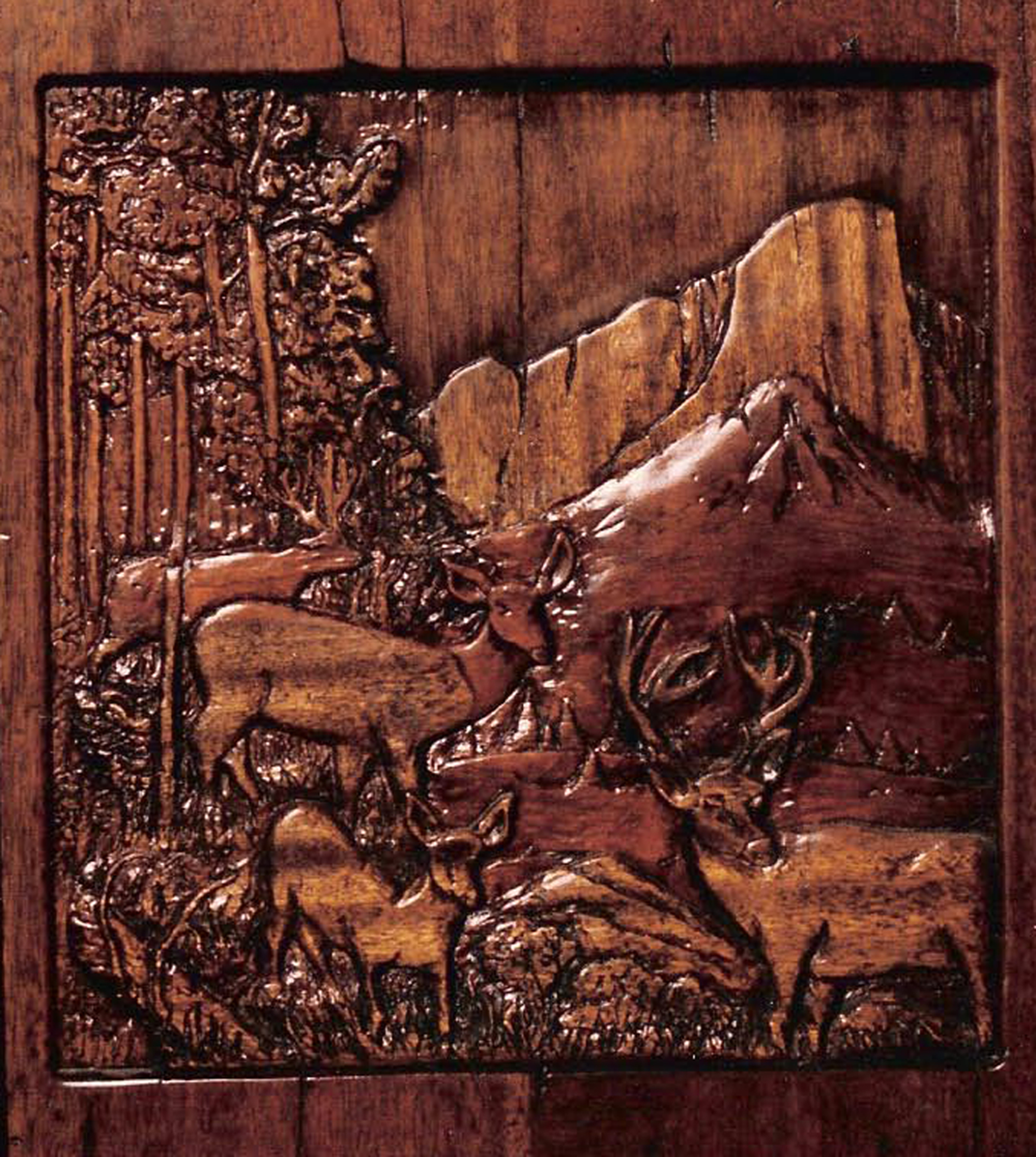 Relief wood carving s mountain lion grant