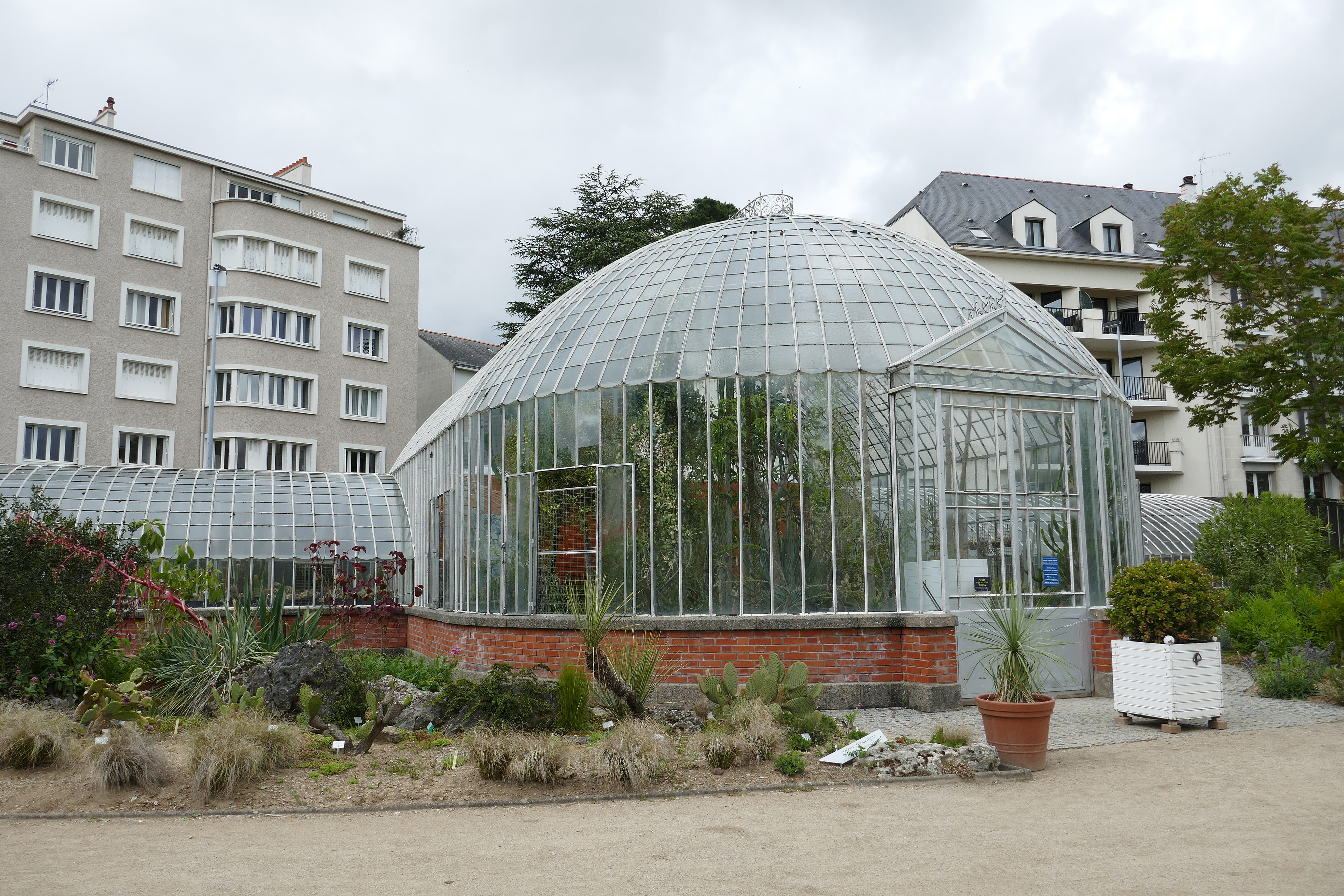 File:Serre des milieux arides-Jardin des plantes de Nantes (1).jpg ...