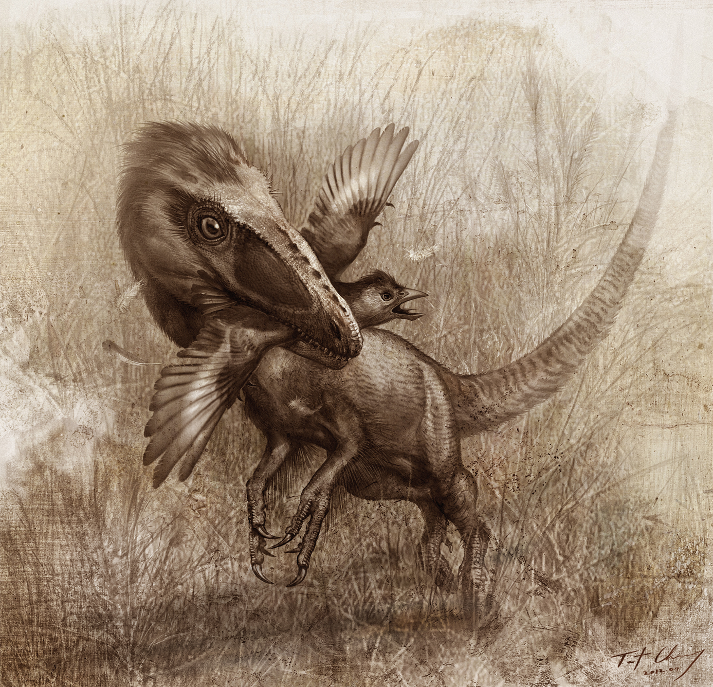 Sinocalliopteryx_gigas_feeding_on_the_primitive_bird_Confuciusornis_-_journal.pone.0044012.g008.png