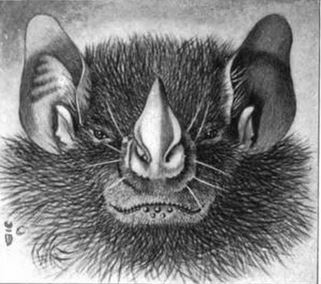 The average litter size of a Tree bat is 1