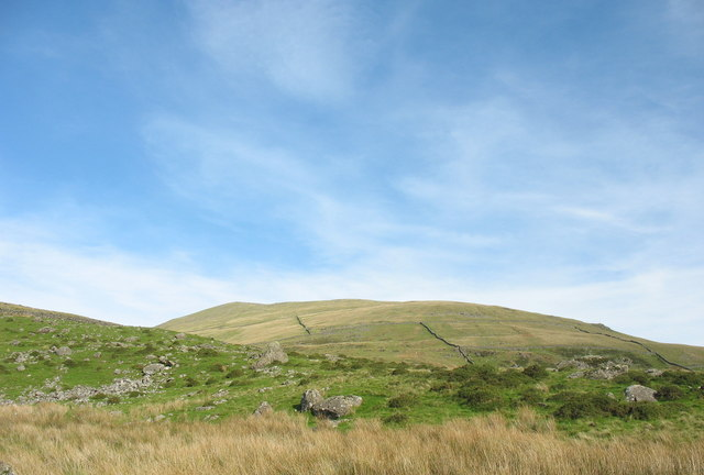 The Friths of the Western Slope of Moel Hebog - geograph.org.uk - 258096