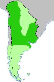 Carte de la Vice-royauté du Río de la Plata (fin du XVIIIesiècle). En vert clair: les régions non soumises par les Espagnols. Buenos Aires est en fait une ville toute proche des territoires indigènes.