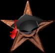 Wikiversity Barnstar Scholar.png