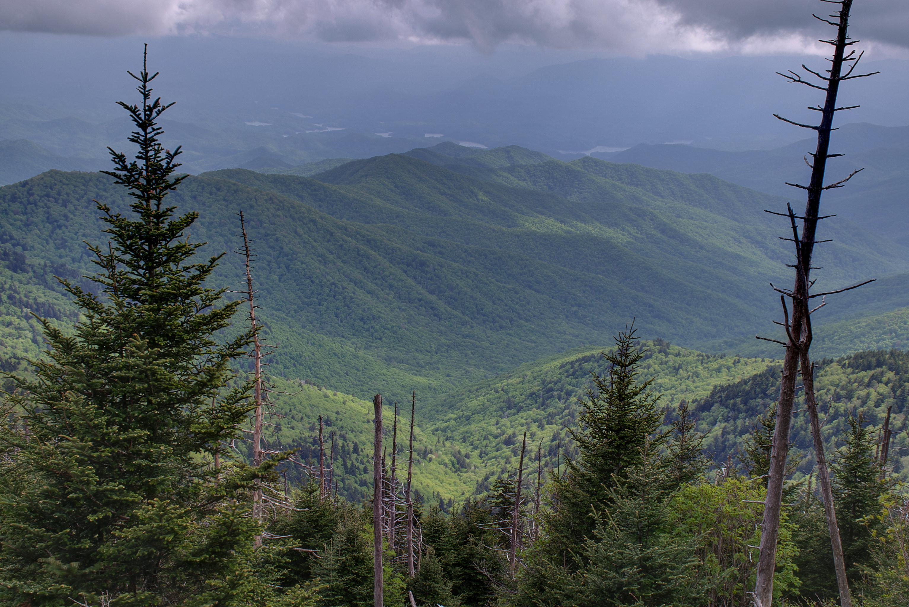 File:15-19-143, view from clingmans dome trail - panoramio ...