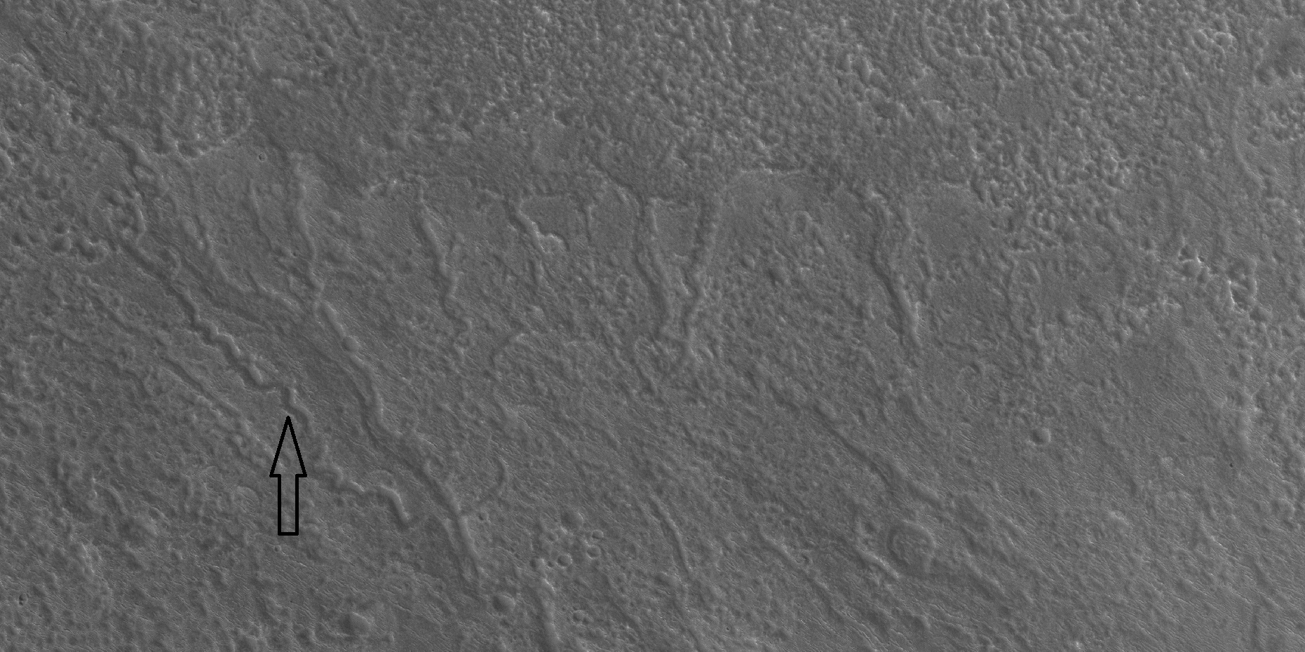 Channels,as seen by HiRISE under the HiWish program