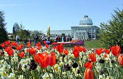 Botanicalgarden.jpg