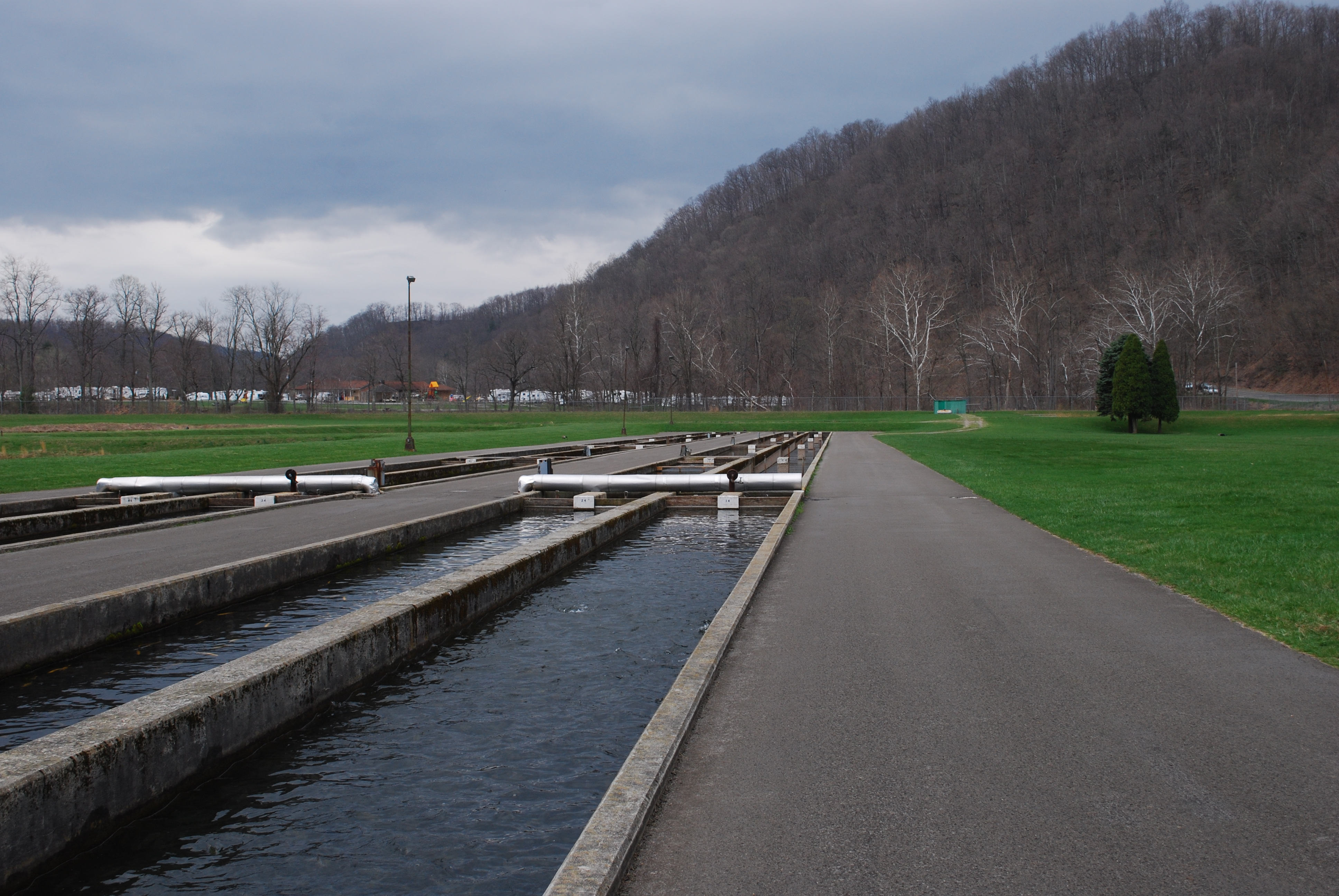 West virginia division of natural resources wikiwand for Virginia fish hatchery