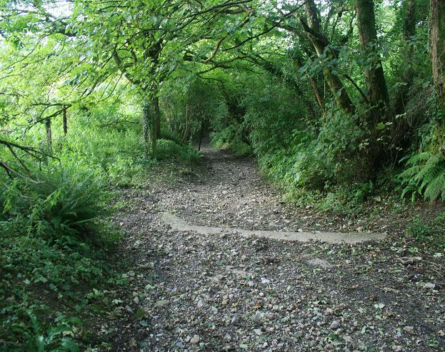 File:Bridleway south of Buckham Down - geograph.org.uk - 529414.jpg