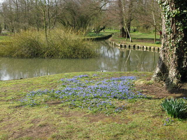 FileEarly Spring Flowers Near Small Pond At Leeds Castle