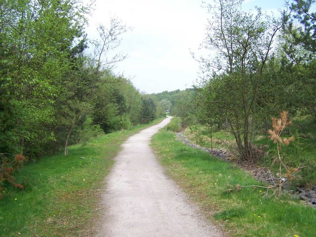 Footpath Through Cannock Chase Country Park - geograph.org.uk - 794826