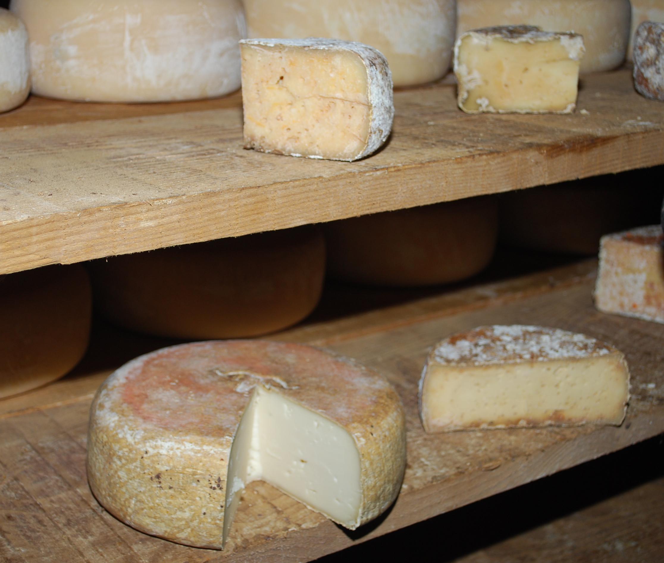 L'ossau iraty est un fromage de brebis des Pyrénées, fabriqué au printemps