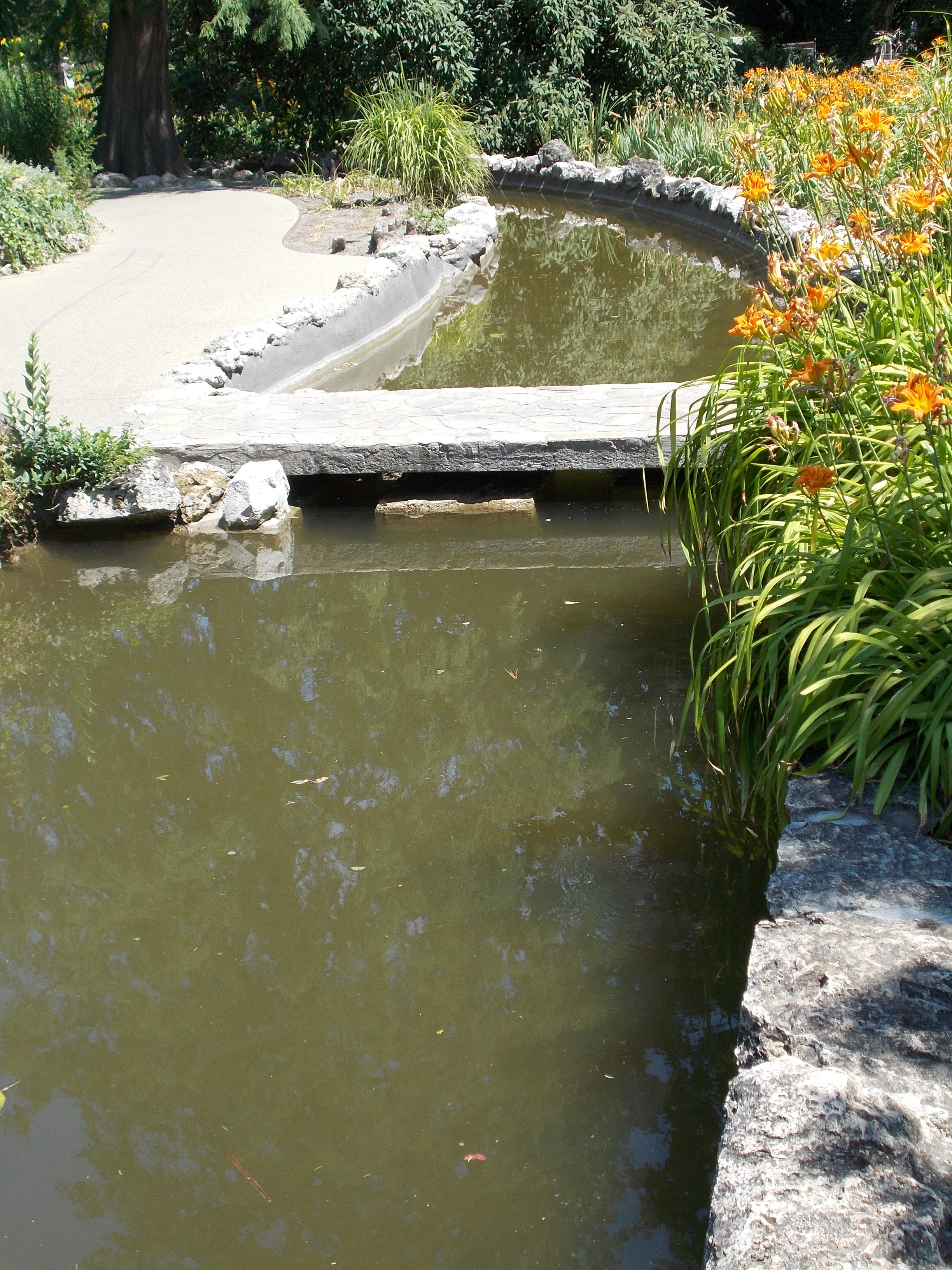 Japanese Garden Stone Bridge file:japanese garden. stone bridge over the channel. - margaret