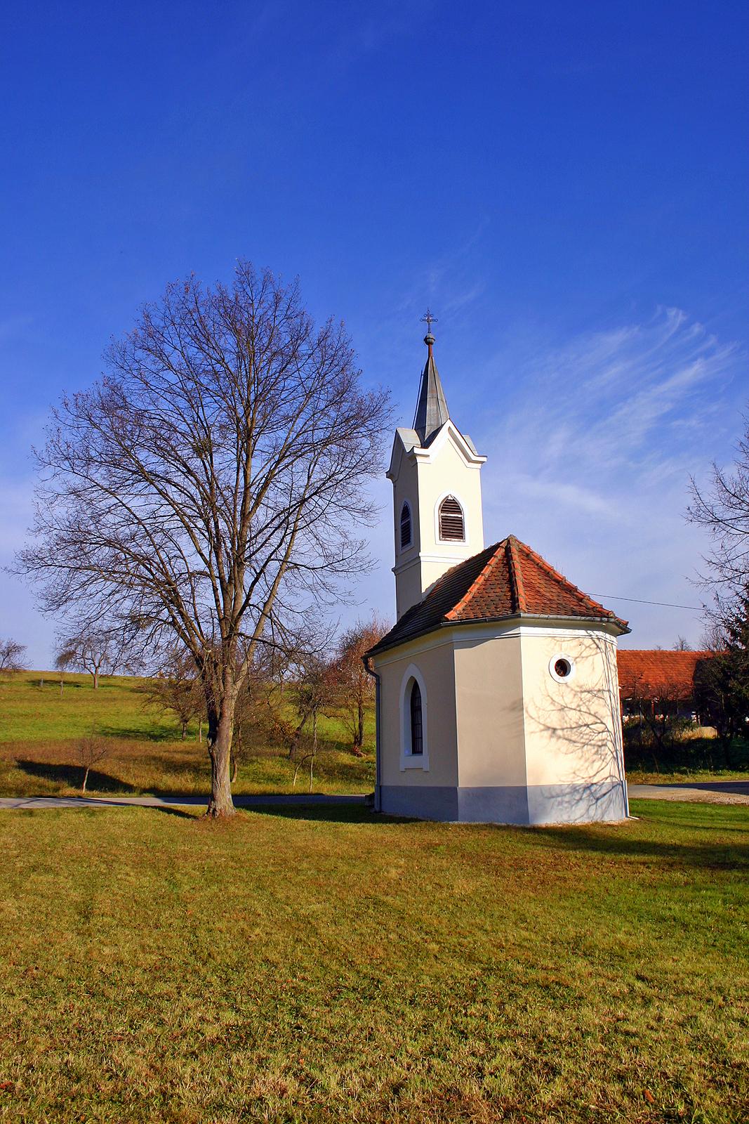 Bukovnica