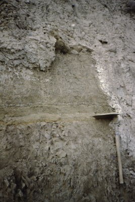 Bonneville flood bed in Lake Bonneville marl at an exposure in northern Utah. The base of the flood bed is at the level of the shovel blade. For scale, the shovel handle is about 50 cm (20 in.) in length. [photo by C.G. Oviatt, 1984]