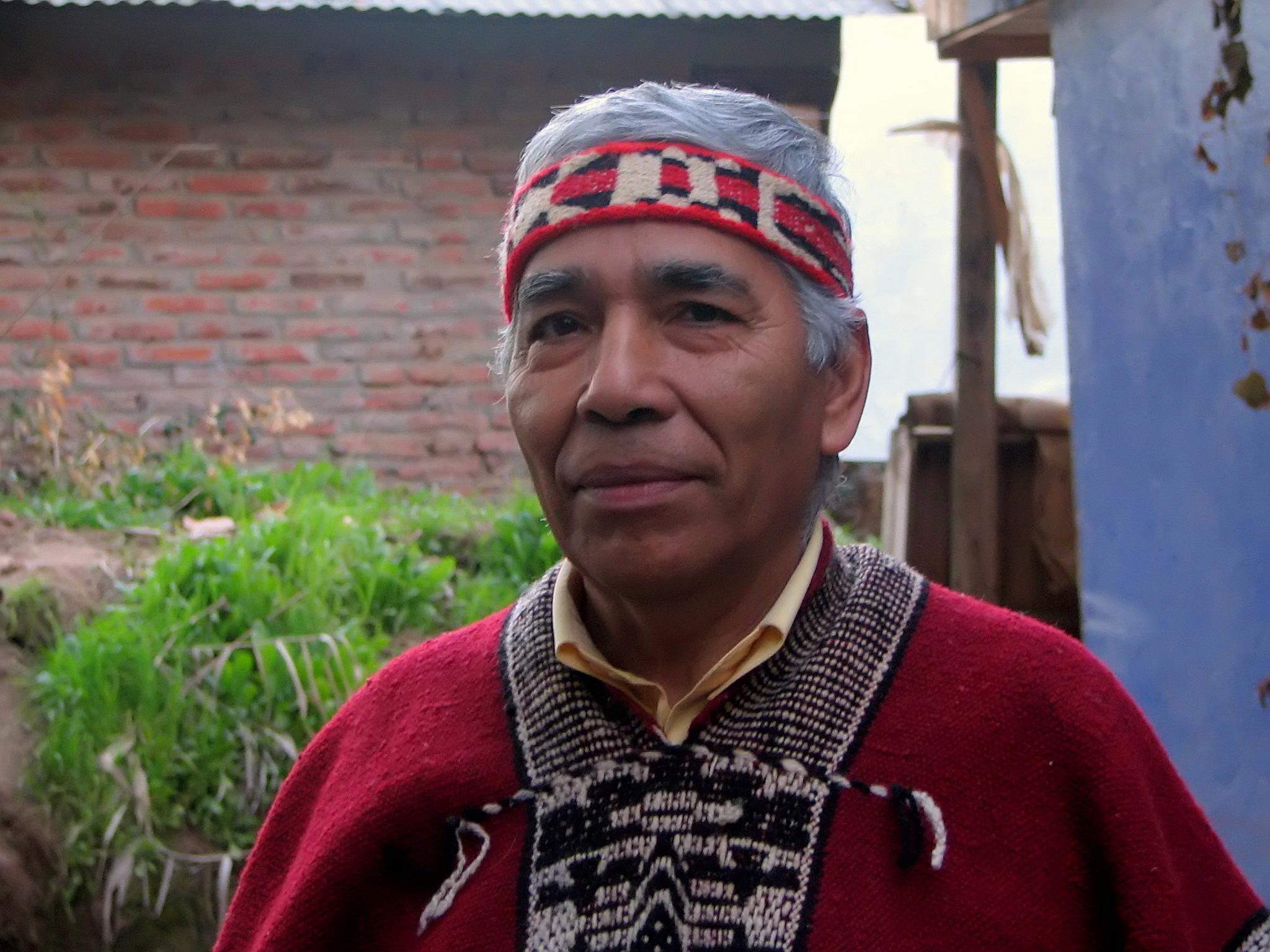 mapuche � wikipedia wolna encyklopedia