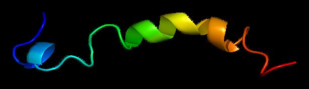 Protein PTHLH PDB 1bzg.png