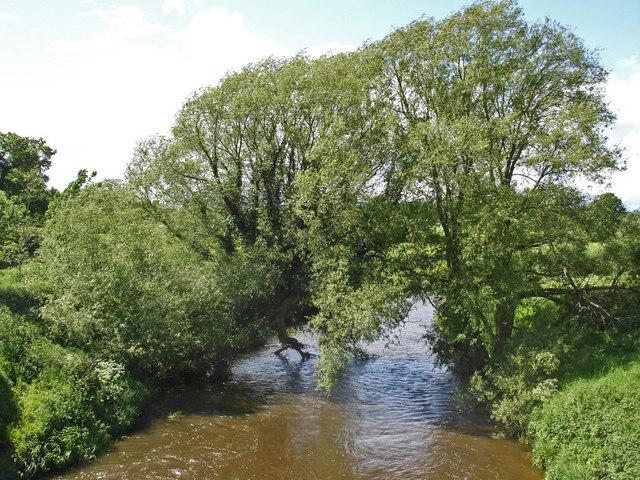 River Dane - geograph.org.uk - 447274