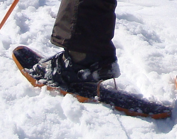 Womens Snow Shoes Uk