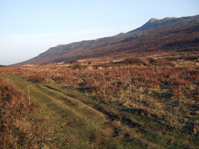The slopes of Carn Llidi - geograph.org.uk - 1099611