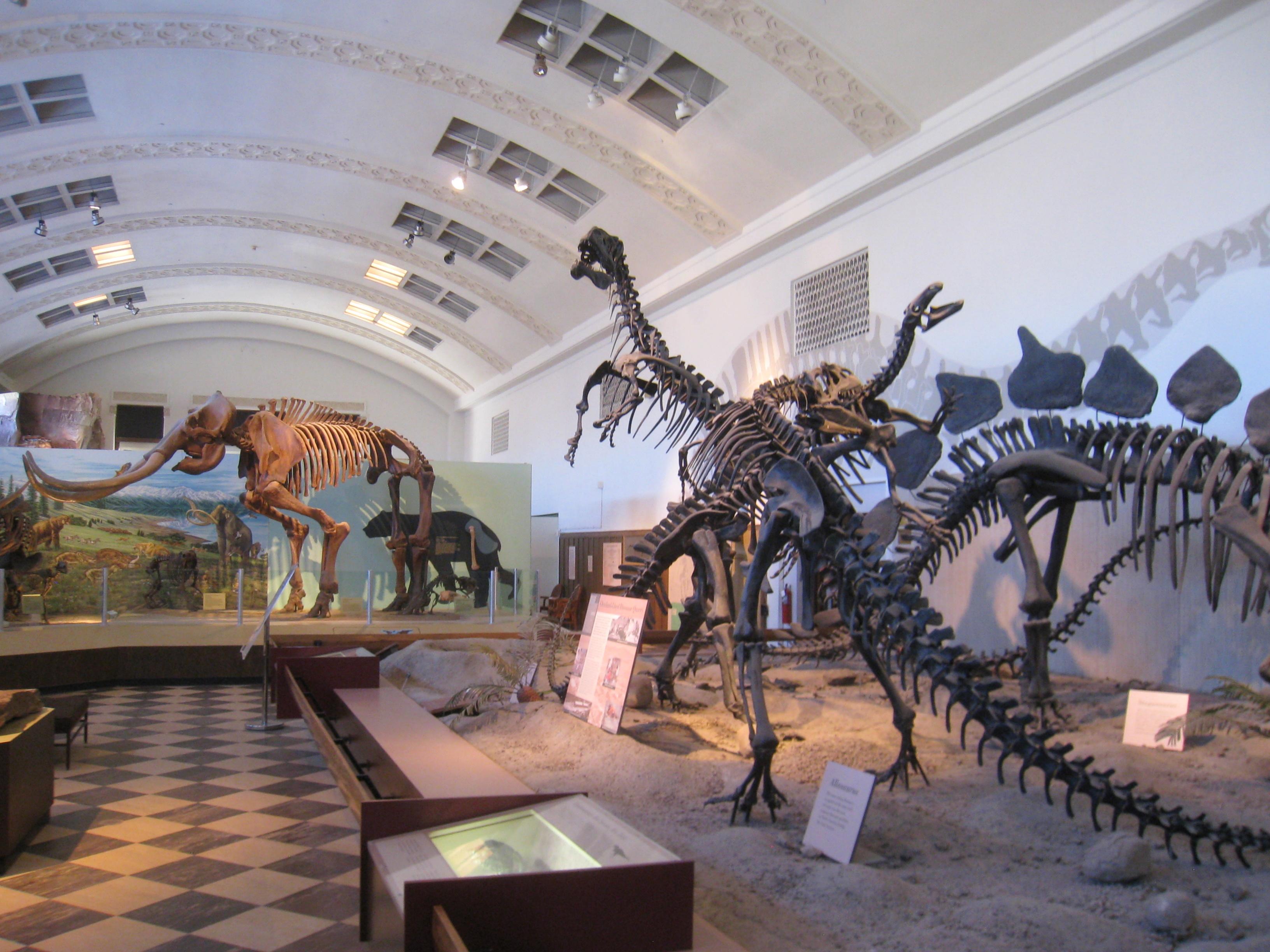 Free Natural History Museum Utah