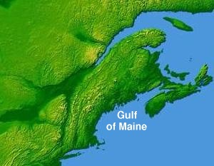 Gulf of Maine (USA) - map