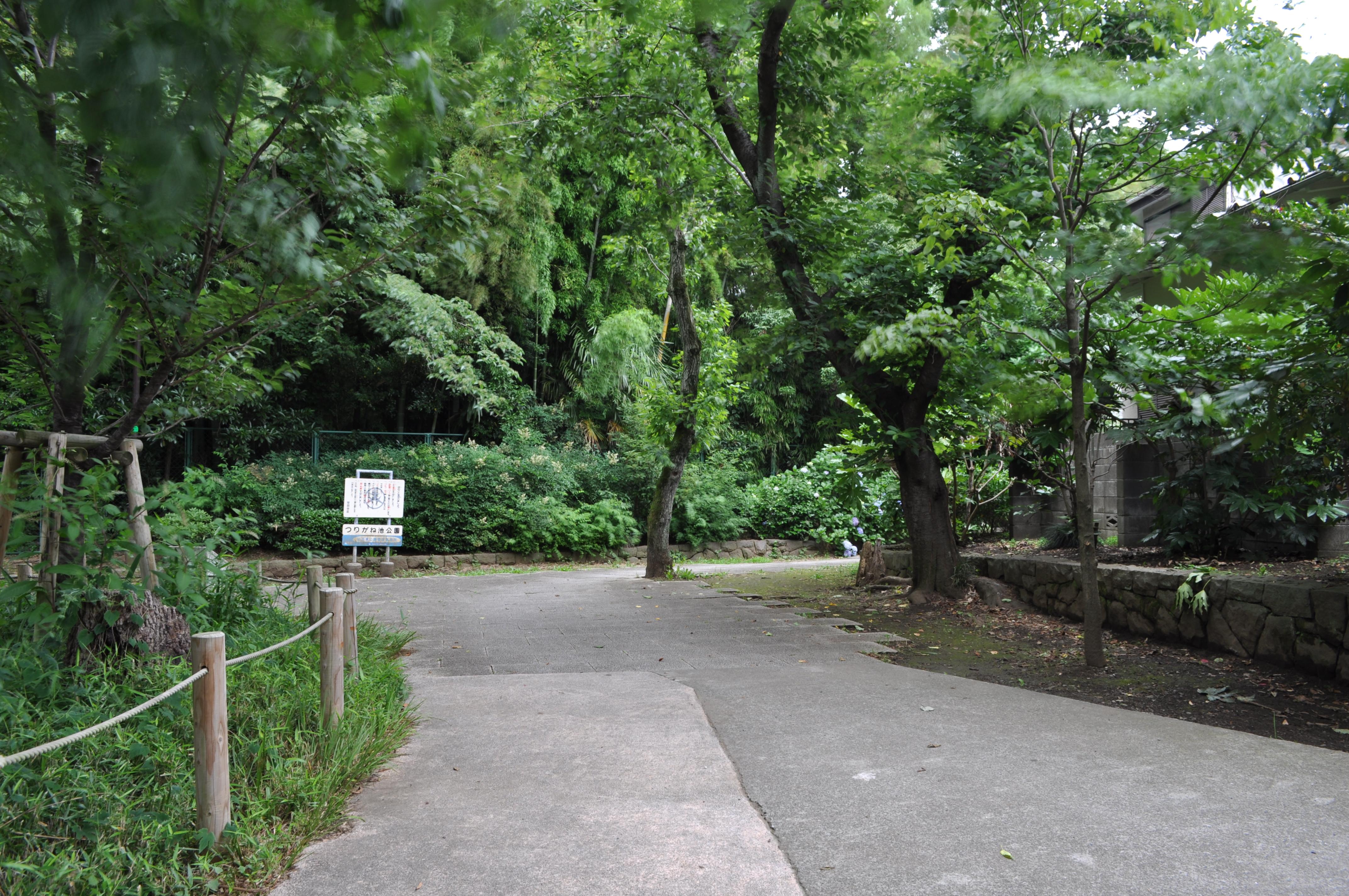 ね 池 公園 つり が