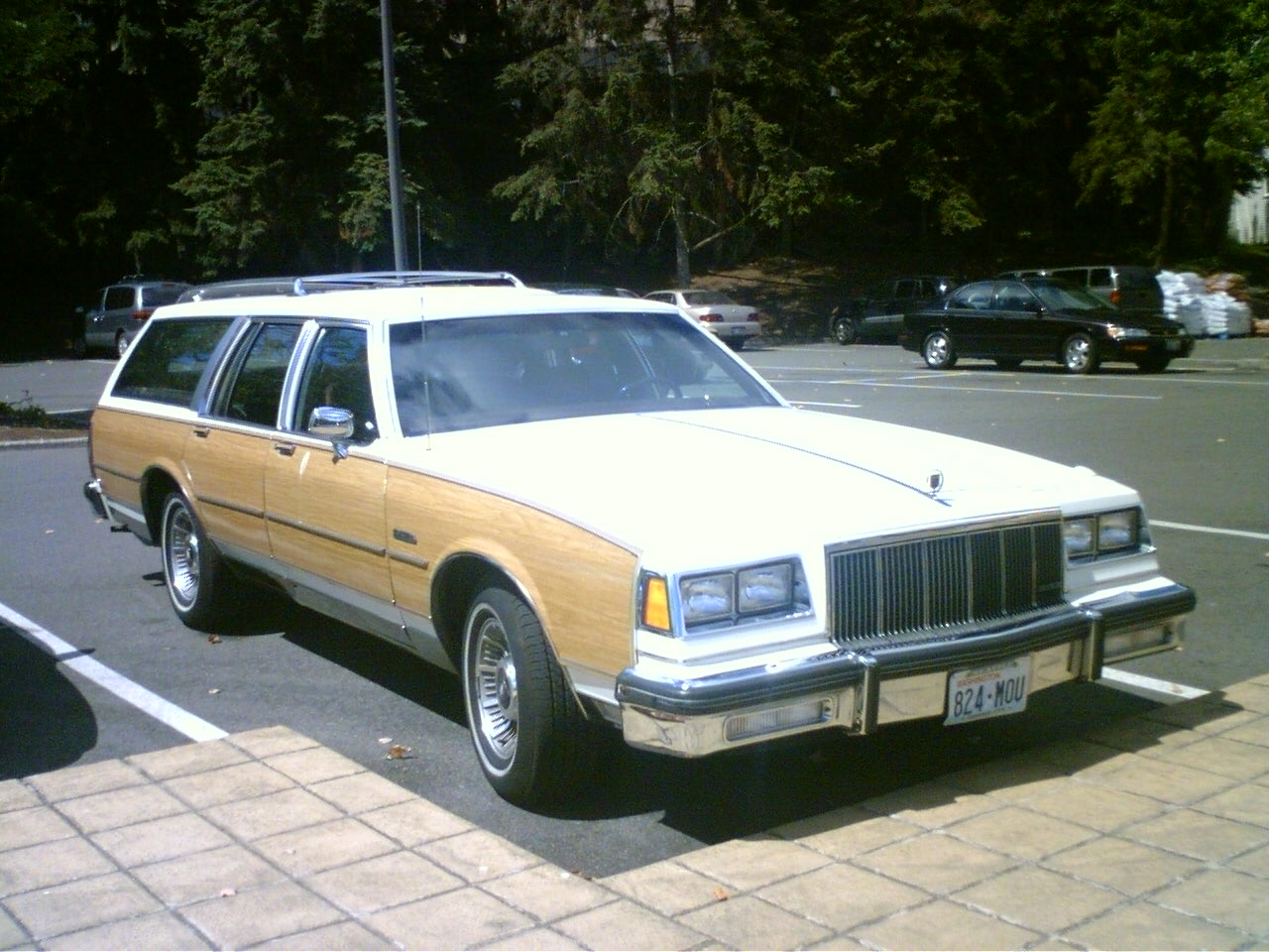 File 1982 Buick Electra Estate In Wa Us Jpg Wikimedia Commons