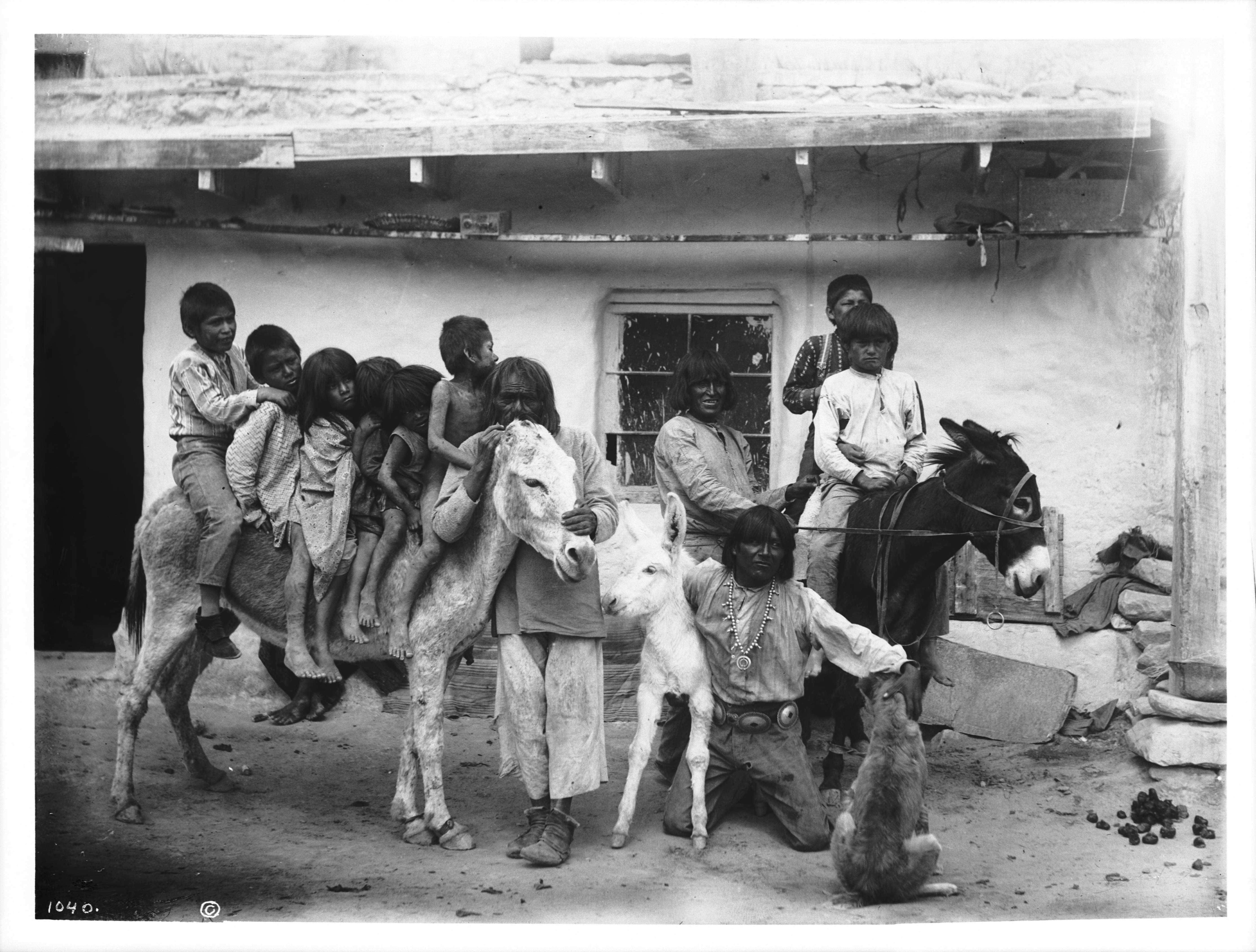 File:A group of Hopi Indian children on a 2 burros in the ...