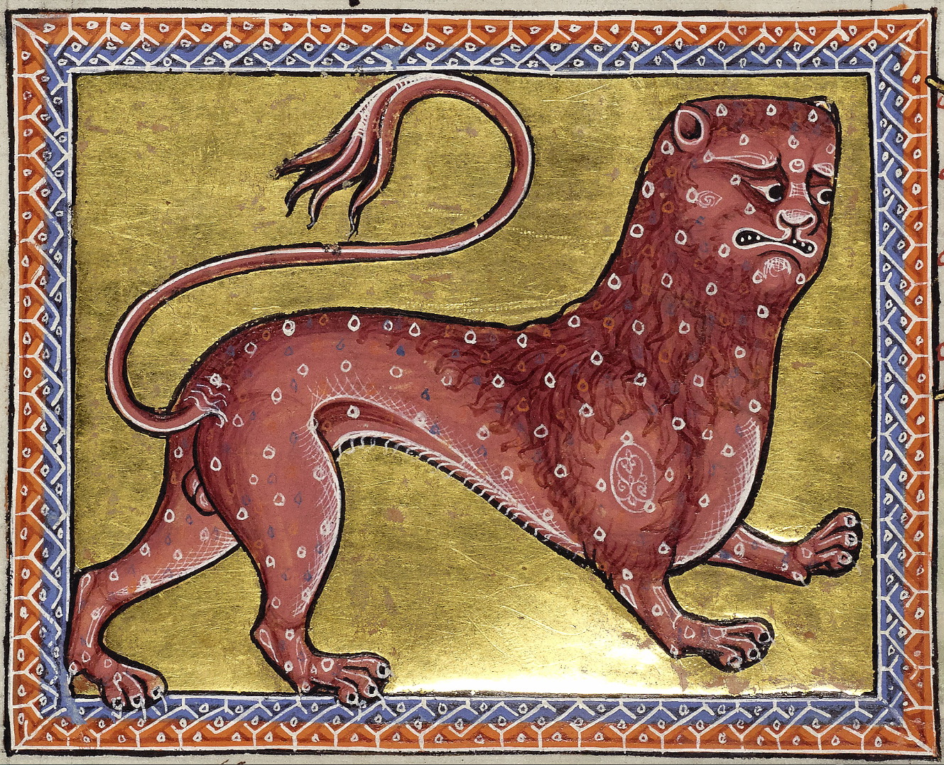 Aberdeen Bestiary, Folio 8 verso, Leopard, 12th century