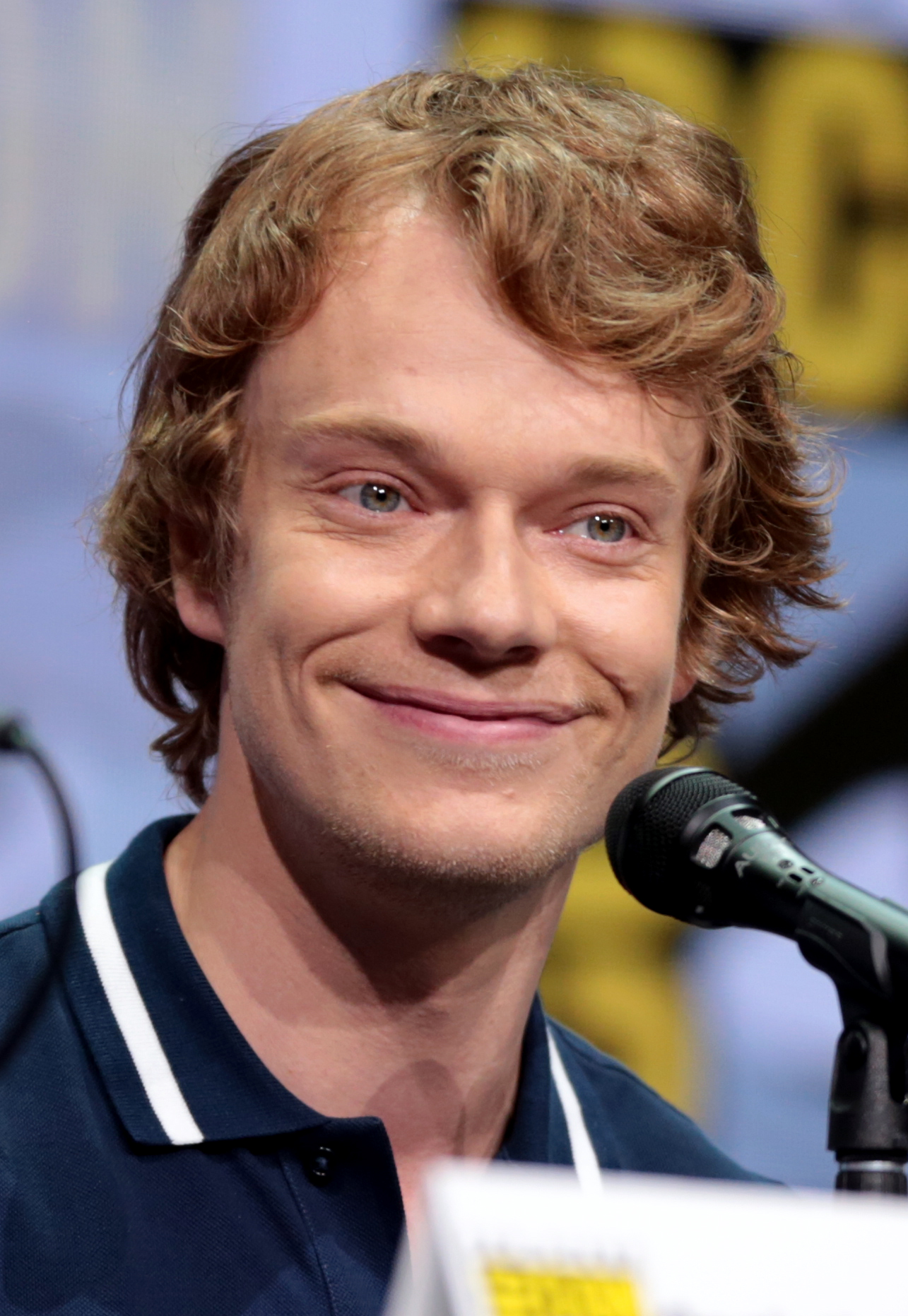 The 31-year old son of father  Keith Allen and mother Alison Owen  Alfie Allen in 2018 photo. Alfie Allen earned a  million dollar salary - leaving the net worth at 2.1 million in 2018