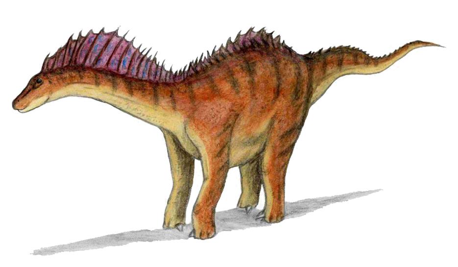 rekonstrukce vzhledu Amargosaura