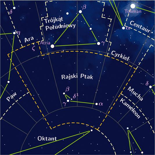 File:Apus constellation PP3 map PL.jpg