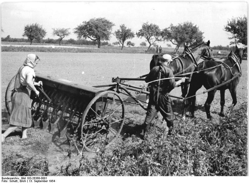 File:Bundesarchiv Bild 183-26368-0001, LPG Weißack, Aussaat.jpg