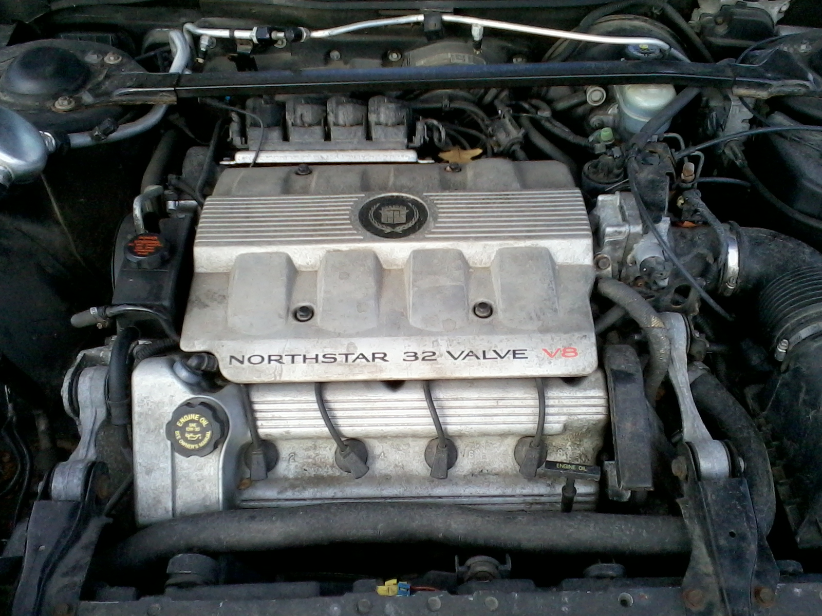 Filecadillac 46 L Dohc V8 Engine Wikimedia Commons Fuse Box In 1999 Cadillac Deville