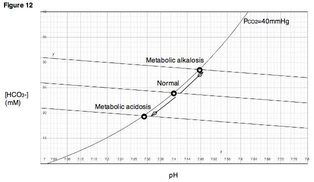 metabolic acidosis - wikipedia, Skeleton