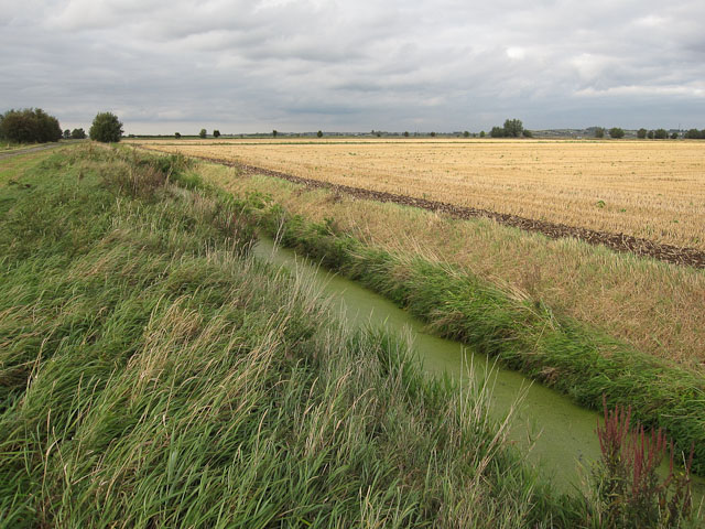 Файл:Drain by the road - geograph.org.uk - 1480343.jpg