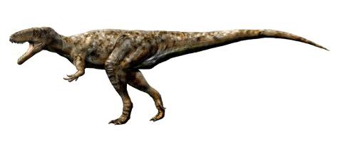 dinosaur of the day 72614 dinosaurs forum